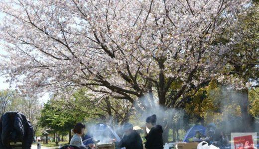【彩湖・道満グリーンパーク】桜が咲く『バーベキュー広場』と遊具が近くにある『中心広場』はどちらもオススメのBBQ場!